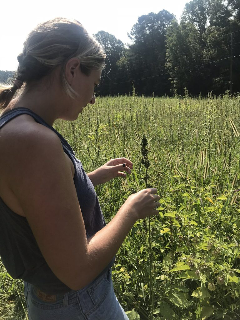Brianna in a field of hemp